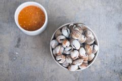 Boiled cockles with tasty sauce. Boiled cockles served with Thai spicy sauce Royalty Free Stock Photo