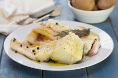 Boiled cod fish with black pepper on white plate Stock Images