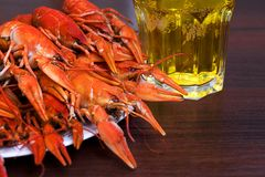 Boiled cooked crayfish crawfish ready to eat on black background. Copy space. Overhead stock image