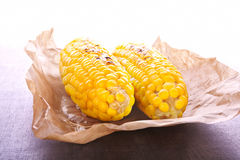 Boiled corn. Stock Image