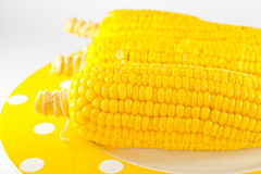 Boiled corn Stock Photo