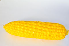 Boiled corn. Royalty Free Stock Photo