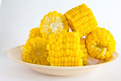 Boiled corn. Stock Photos
