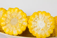 Boiled corn. Boiled sweet corn with salt Royalty Free Stock Photos