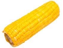 Boiled corn Stock Photo