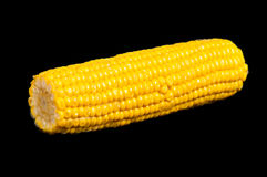 Boiled corn. On a black background Royalty Free Stock Image