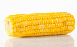 Boiled corn Stock Photography