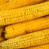 Boiled corn on an aluminum tray. Corn near. Closeup of corn. Yellow boiled young corn, useful and tasty. Food stock photos