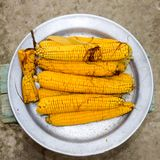 Boiled corn on an aluminum tray. Yellow boiled young corn, useful and food. Boiled corn on an aluminum tray. Yellow boiled young corn, useful and tasty food royalty free stock image