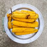 Boiled corn on an aluminum tray. Yellow boiled young corn, useful and food. Boiled corn on an aluminum tray. Yellow boiled young corn, useful and tasty food stock photography
