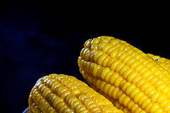 Boiled corn Royalty Free Stock Photos