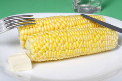 Boiled corn cob with butter Royalty Free Stock Photo