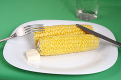 Boiled corn cob with butter Stock Photography