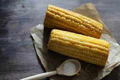 Boiled corn cob with salt on a wood Stock Images