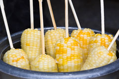 Boiled corn cob sticks Royalty Free Stock Images