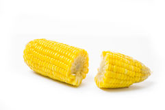 Boiled corn isolated on white Royalty Free Stock Image