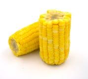 Boiled corn isolated on white background Royalty Free Stock Photo