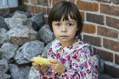 Boiled corn. Stock Photography