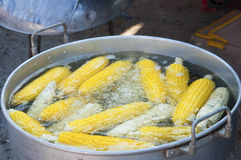 Boiled corn. In a pan On the market Stock Images