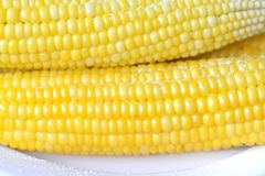 Boiled corn Stock Photos