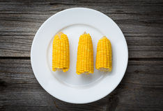Boiled Corn on a plate, food closeup Royalty Free Stock Photo