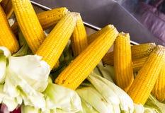 Boiled corn Stock Photos