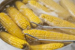 Boiled corn for sale Stock Photo