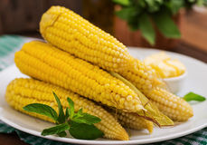 Boiled corn with salt and butter Stock Images