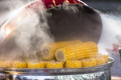 Boiled corn in a saucepan with hot water and steam on a city street, selling boiled corn. Royalty Free Stock Photo