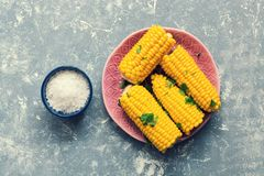 Boiled corn is served with salt on a gray background. View from above. stock image