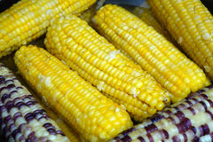Boiled corn Royalty Free Stock Photography