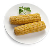 Boiled corncobs Royalty Free Stock Photography