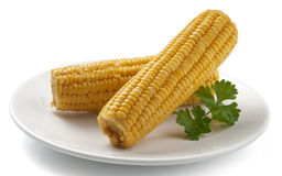 Boiled corncobs Stock Photo