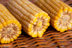 Boiled corns Royalty Free Stock Photo