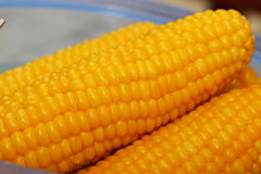Boiled corns. Some piece of boiled corns - close up photography Royalty Free Stock Photography