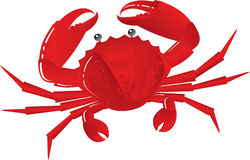 Boiled crab. On snack to beer Stock Photo