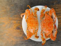 Boiled crab. In white plate on wood surface Royalty Free Stock Image
