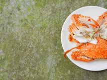 Boiled crab. In white plate on wood surface Royalty Free Stock Photo