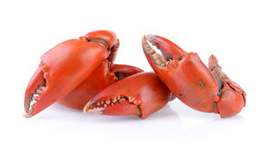 Boiled crab claws Royalty Free Stock Photos