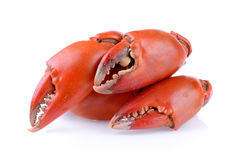 Boiled crab claws  Stock Image