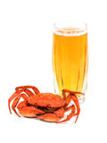 Boiled crab and glass of beer on white Stock Photo