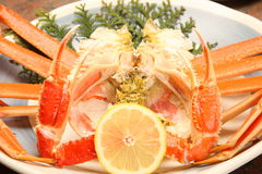 Boiled crab. Studio shot of boiled crab royalty free stock photography