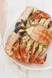 Boiled crab on white plate Royalty Free Stock Photo