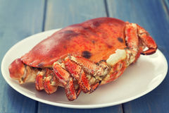 Boiled crab on white plate Royalty Free Stock Photography