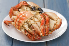 Boiled crab on white plate Stock Image