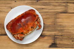 Boiled crab on white plate Royalty Free Stock Images