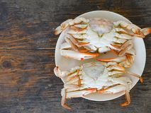 Boiled crab. In white plate on wood surface Stock Photo