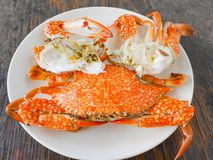 Boiled crab. In white plate on wood surface Royalty Free Stock Photos