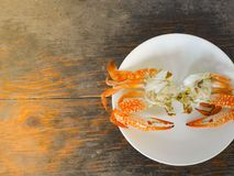 Boiled crab. In white plate on wood surface Stock Images