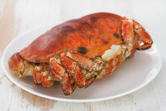 Boiled crab on white plate Stock Photo